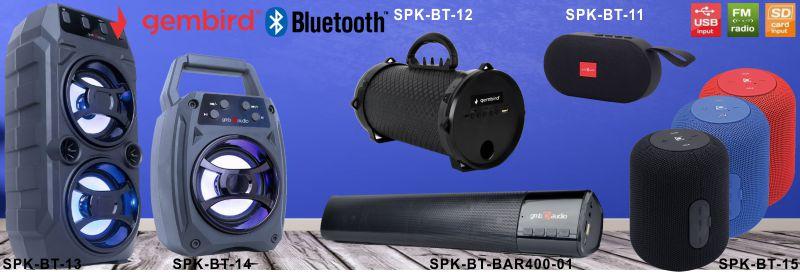 SPK BT 2020